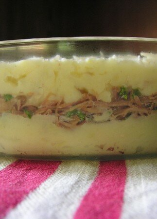 parmentier_canard__tages
