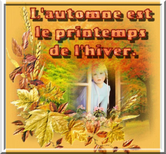 automne 7