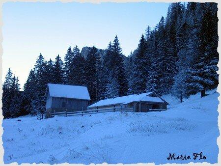 Une_promenade_dans_la_neige_12