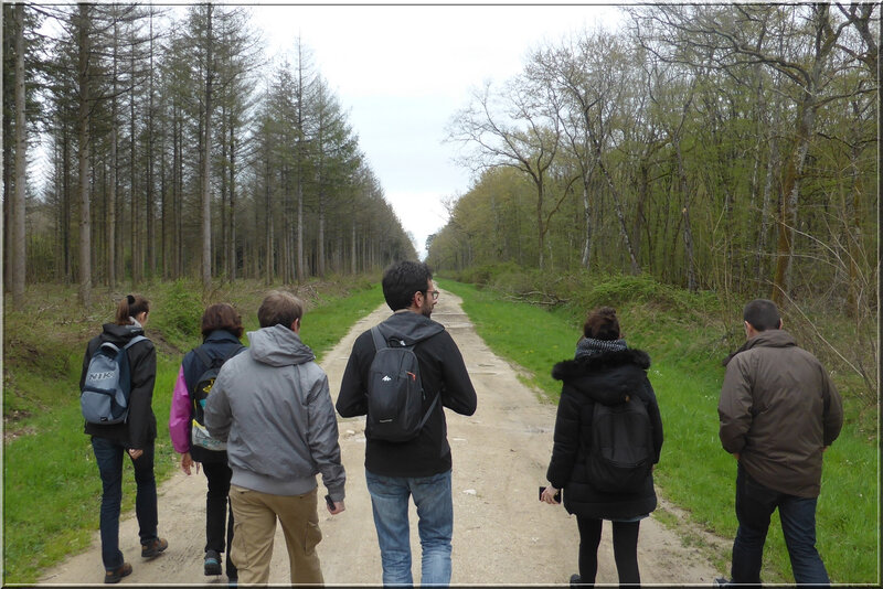 Geocaching foret d'Orleans (3)