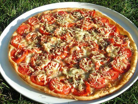 tarte fine aux tomates (6)