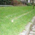 La pelouse du souvenir