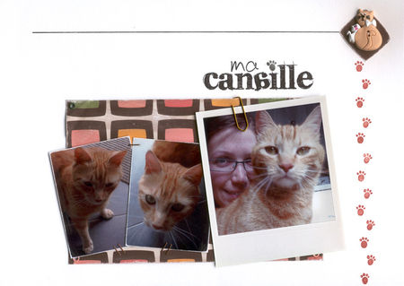 02_canaille