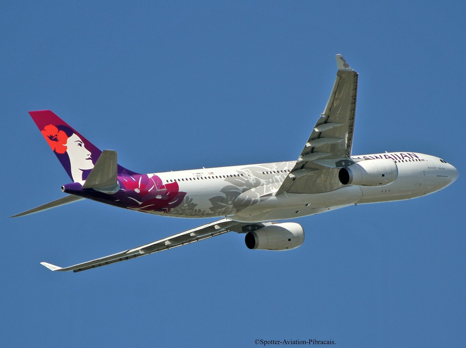 Hawaiian Airlines. NEW LIVERY.