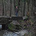 Bois de Colfontaine - Ruisseau d'Elwasmes - 20130106_28