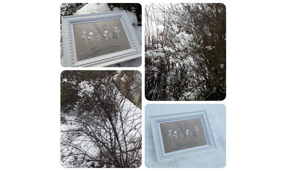 Kit-creatif-n12-Jardin-d-hiver-284-2-big-2-www-quelquespointsdecouleurs-kingeshop-com