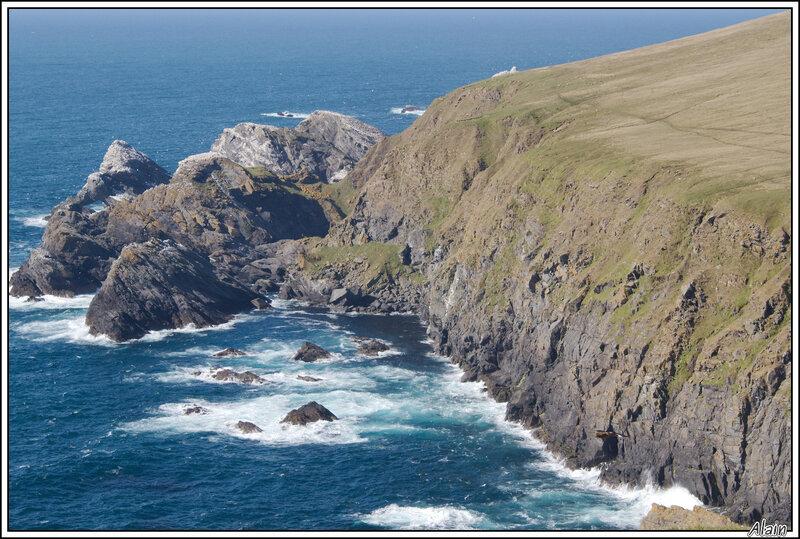 un paysage paradisiaque pour les oiseaux de mer !