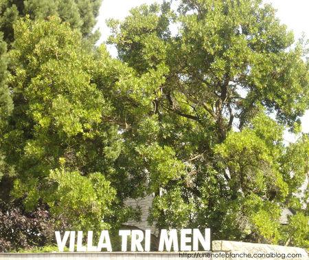 villa_tri_men
