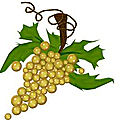 Le labyrinthe des vignes par maëlle halévy-vitalis - concours d'écriture de textes