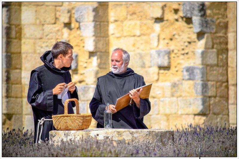 moines abbaye maillezais rabelais (2)