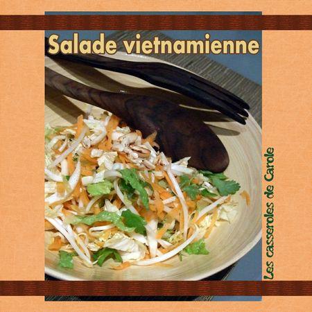 Salade_vietnamienne_scrap_