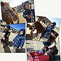 Mardi 19 mars 2019 - poneys