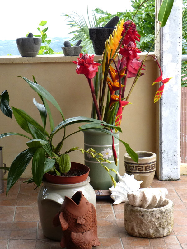 bouquet Heliconias