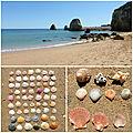 Algarve : praia do pinhão / ria formosa / olhão