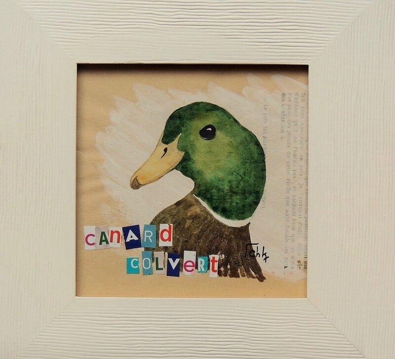 aquarelle canard colvert - Charlotte Keraudren