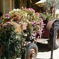 Tracteur tout en fleurs