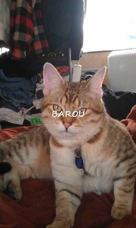 BAROU5