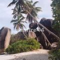 la digue_ anse source d'argent_060