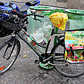 vélo agrumes_0447