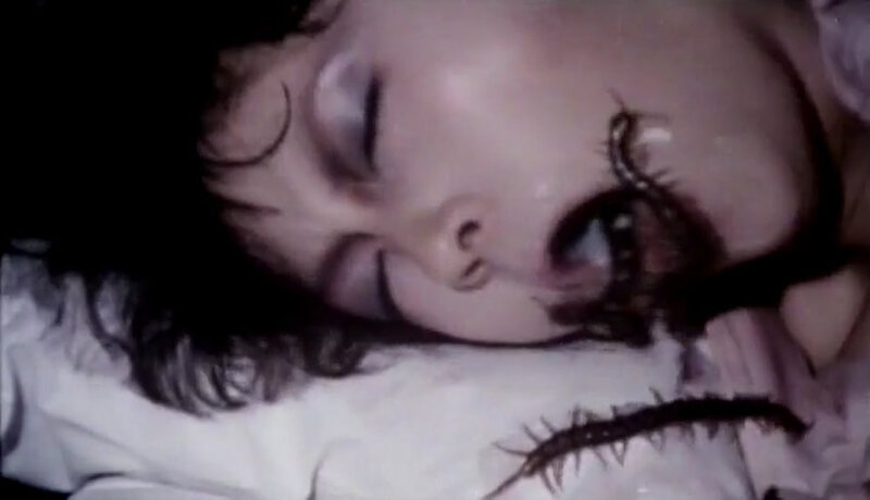 Centipede-Horror-1982-01-31-23