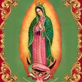 guadalupe-3