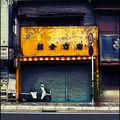 251_Echoppe_Kamakura_4