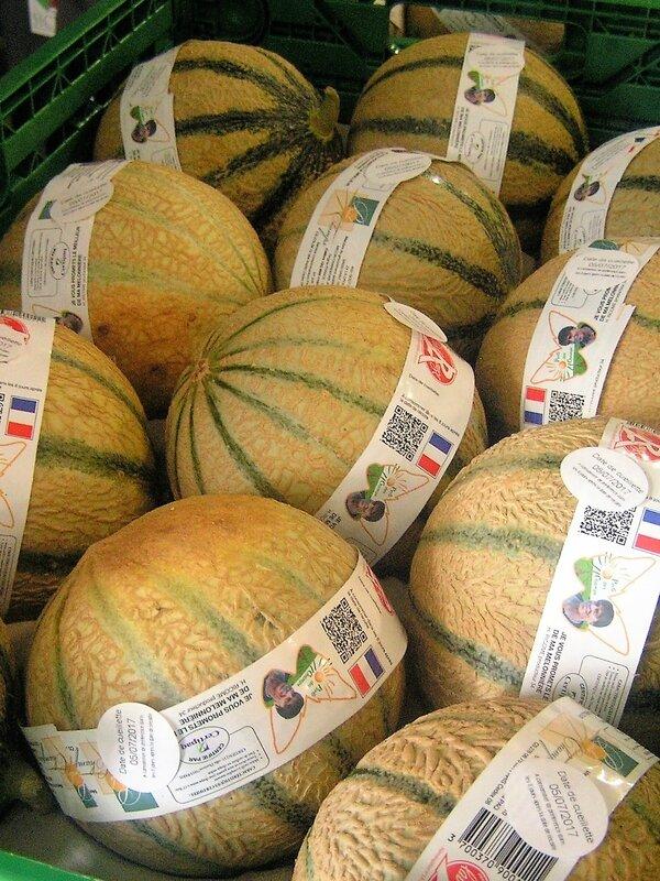 2017 07 05 - voyage Intefel melon (14)