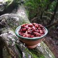 Nomades : bol de haricots rouges
