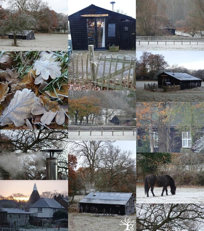 2017-11 the old apple shed