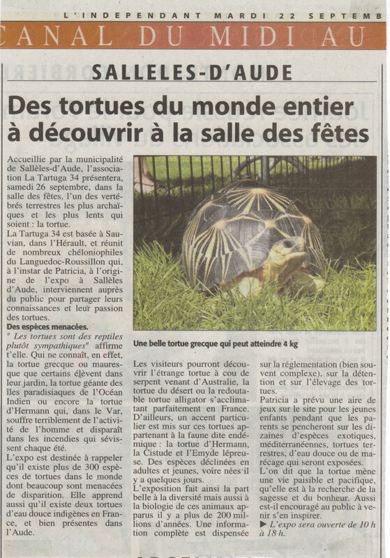 sall-les-article-1