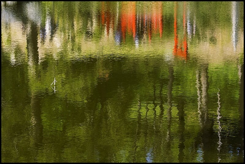 02-Impression jardin