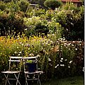 Windows-Live-Writer/jardin_D005/DSCF3891_thumb