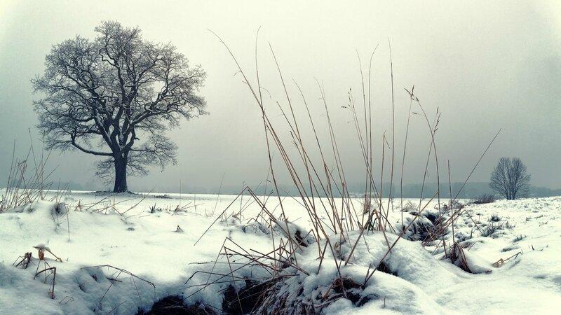 Pixabay météo-2