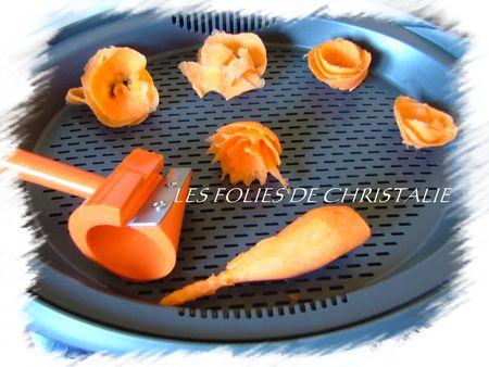 FLEURS_DE_CAROTTES_1