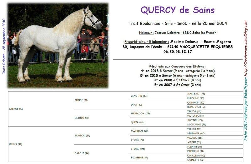 Fiche QUERCY DE SAINS 2014