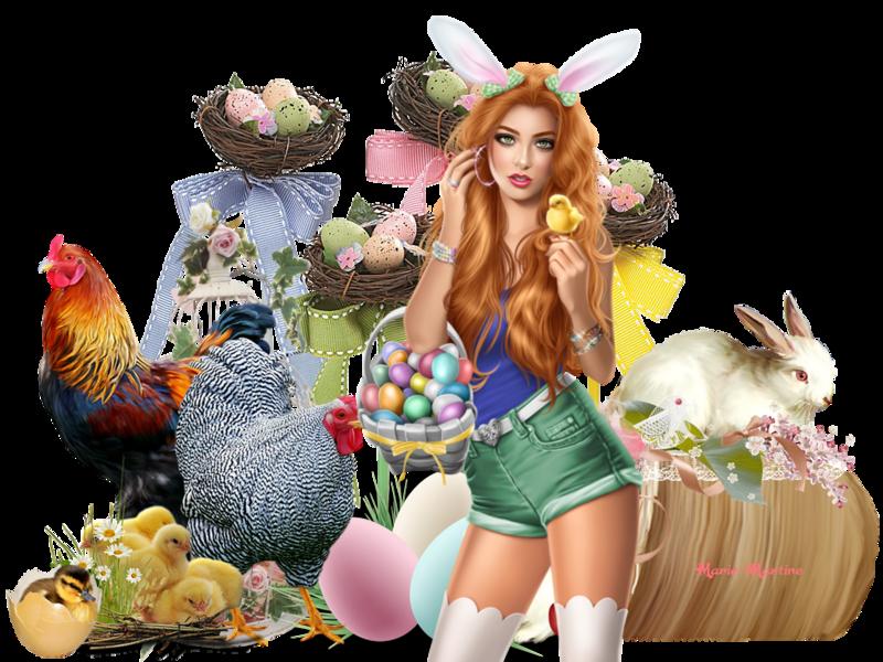 lapins et poules