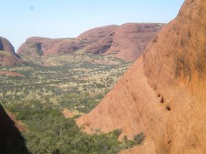 Uluru - Kata Tjuta - King's Canyon 082