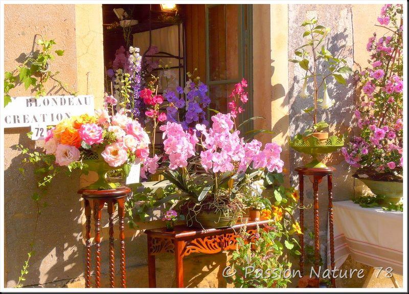 Saint-Jean de Beauregard fête les plantes (28)