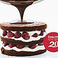 [jeu-concours] un gâteau d'anniversaire pour les 20 ans de thalys