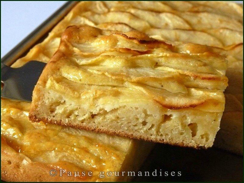 Pavé moelleux aux pommes (16)