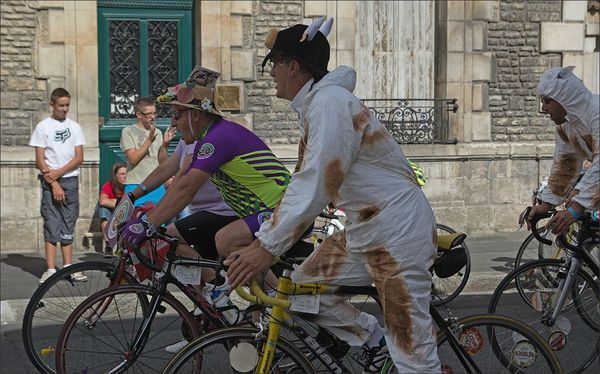 Niort cyclos parade normands vaches 120812