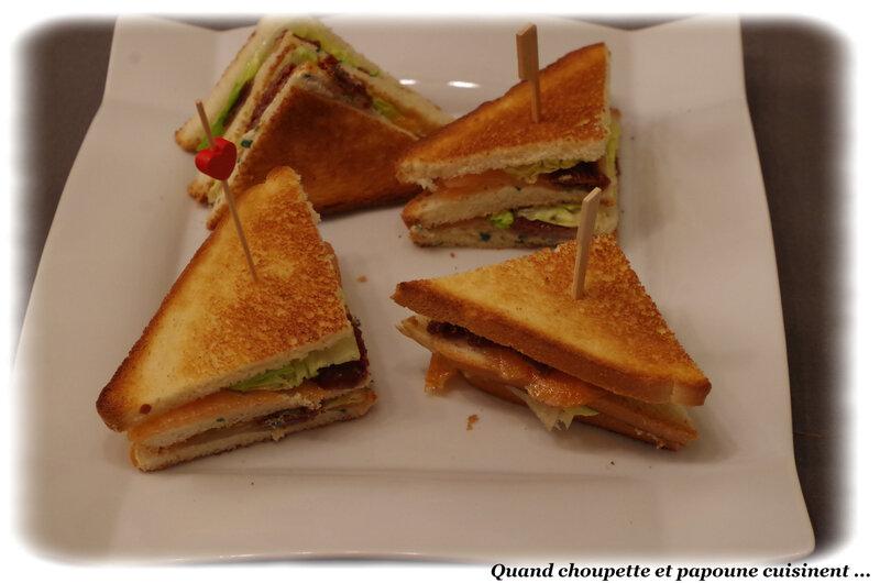 sandwich de saumon fumé-8330