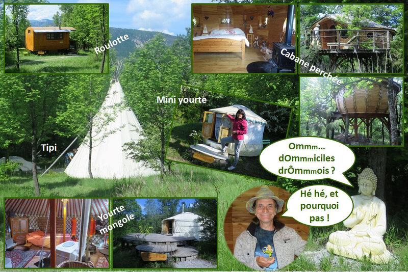 blog ecosite bellecombe habitat insolite