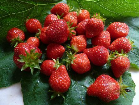 23-fraises (1)