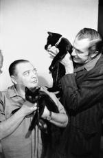 peterlorre-vincentprice