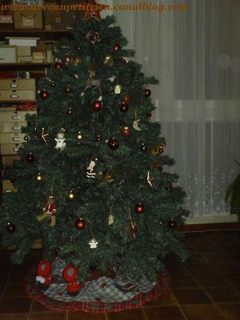 sapin_2008
