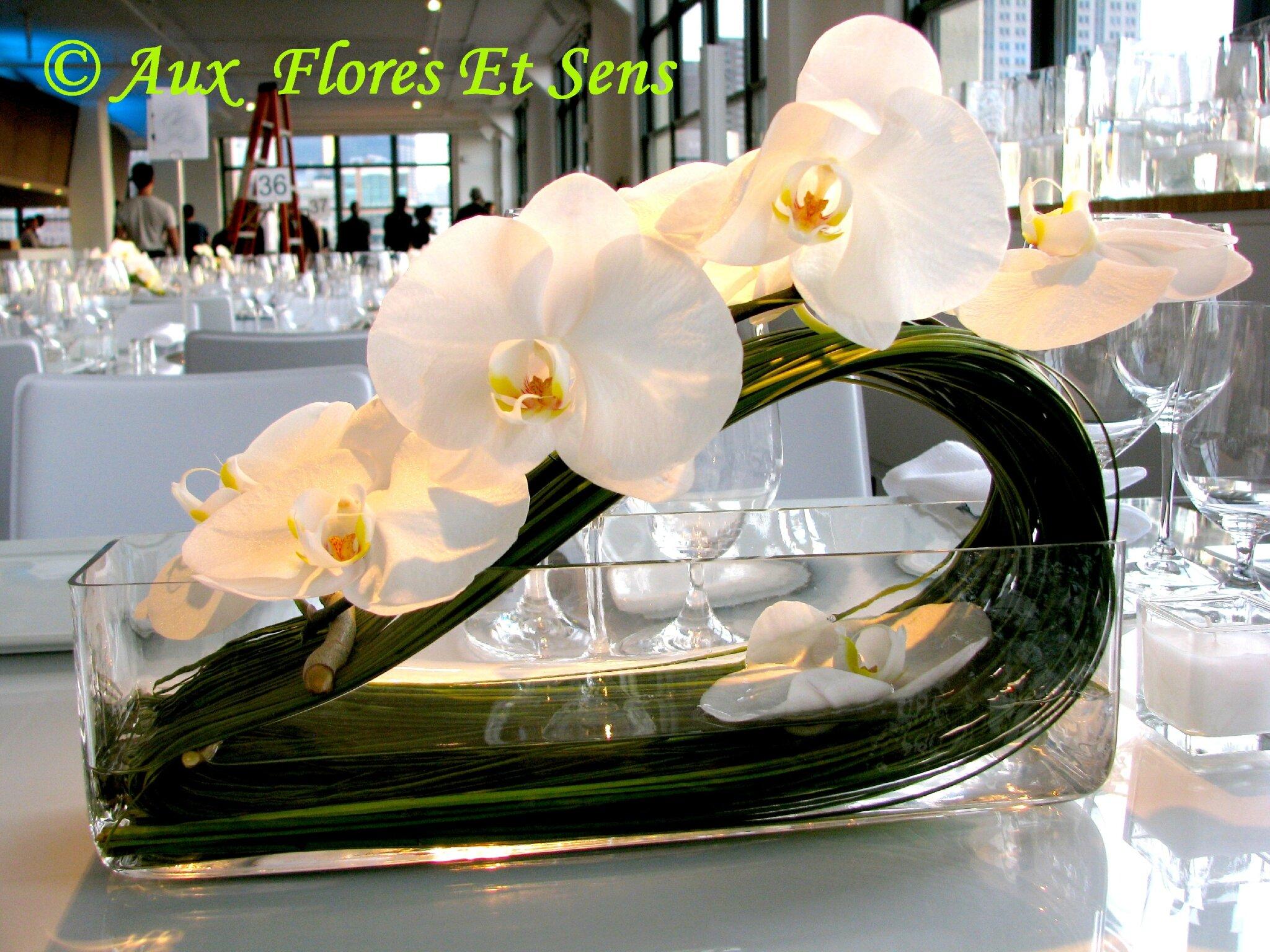 Centre de table Phalaënopsis blanc