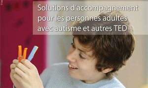 solutions d'accompagnement pour les adultes guide FEGAPEI