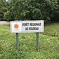 En forêt de rougeau pr29