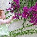 Une fleur parmi les fleurs